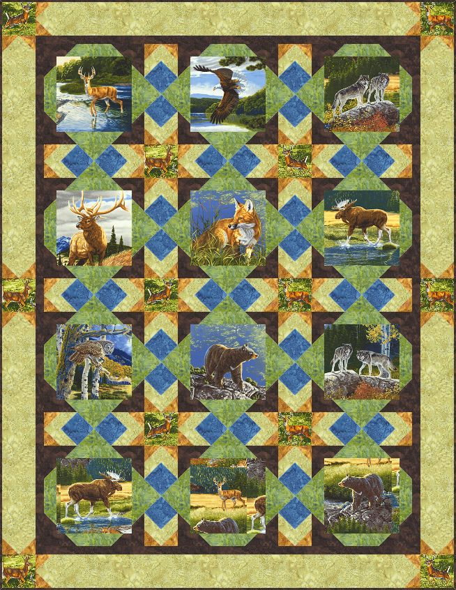 Wilderness Stars FREE Quilt Pattern - personalize your own at http://www.equilter.com/pattern/582/wilderness-stars