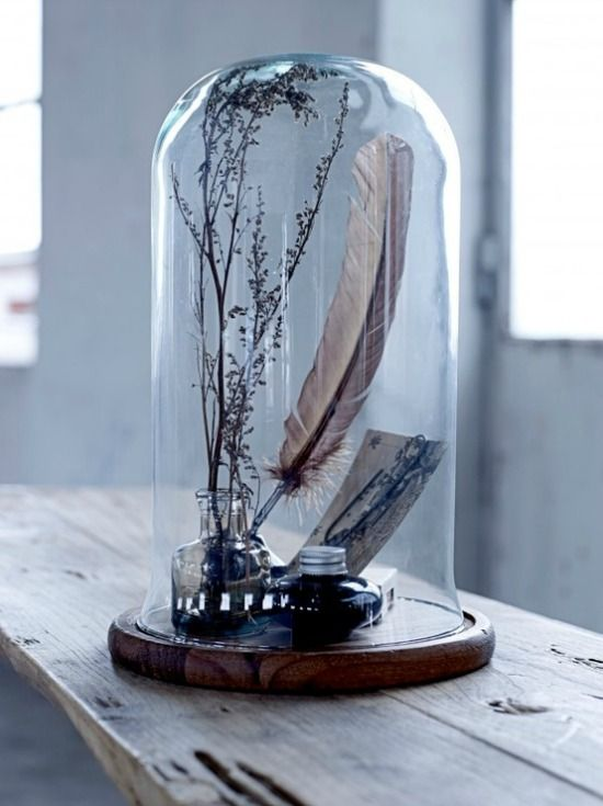 Onder een glazen stolp kun je jouw mooiste objecten tentoonstellen. Stolpen houden je voorwerp stofvrij en maken het ineens heel bijzonder!