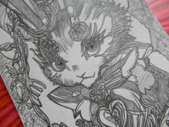 Pierce rabbit