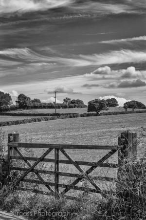 Gated Field by Chris Burgess - Photography For Beginners