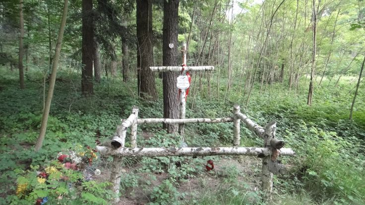 Leśny grób nieopodal Nieznanowic