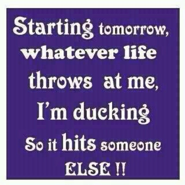 : Sayings, Life, Quotes, Funny Stuff, Funnies, Humor
