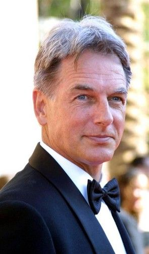 Mark Harmon - Mark Harmon Photo (34746520) - Fanpop