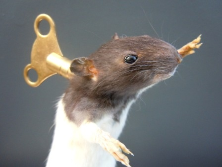 taxidermy clockwork dancing rat