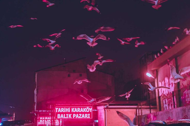 Istanbul at Night: Neon Colors, Foggy and Cinematic Nightscapes by Elsa Bleda #inspiration #photography