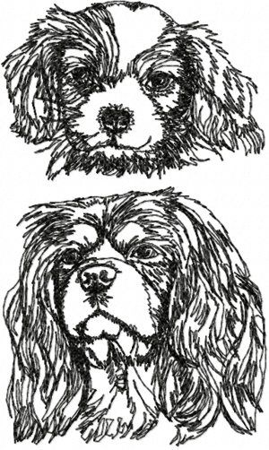 Advanced Embroidery Designs - Cavalier King Charles Spaniel Set II