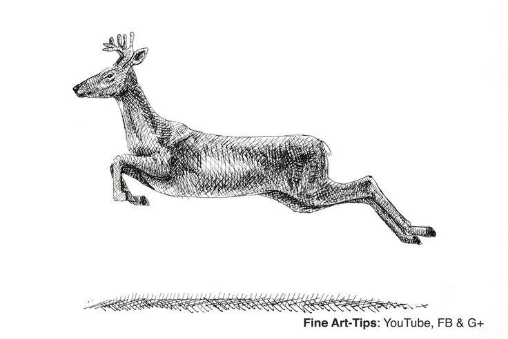 How to Draw a Deer - Elk - Reindeer - Moose   #art #drawing #FineArtTips #deer #tutorial #artistleonardo #LeonardoPereznieto #Tutto3  Take a look to my book here: http://www.artistleonardo.com/#!ebooks-english/cswd