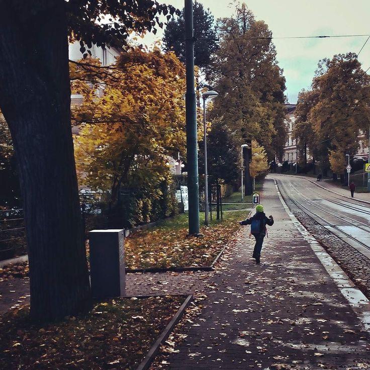 #podzim #autumn #herbst #citylife #city #mycity #libereckykraj #liberec #reichenberg #sudetenland #sudety #joy #mobilephotography #czech_world #czech #czechrepublic #czech_insta #igraczech #igers #igerscz #instaczech #instadialy