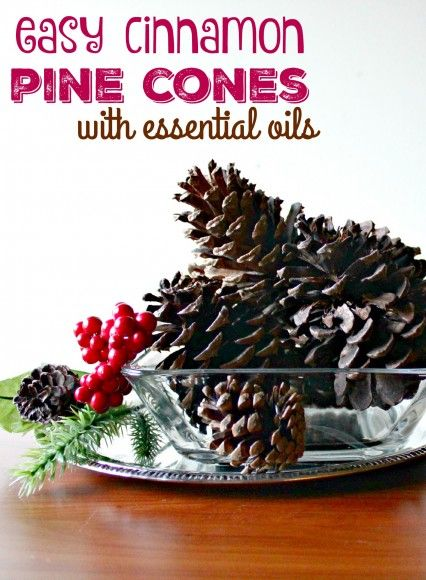 1000+ images about Xmas Ideas on Pinterest | Pinecone garland ...
