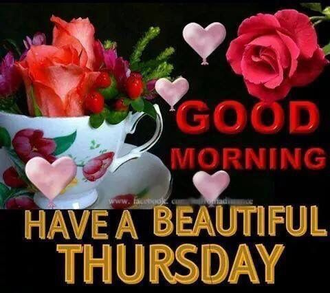 Good Morning Friends, have a beautiful and blessed day.