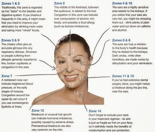 ~ Raw and Lovely ~: Acne face mapping: What Is Your Acne Trying to Tell You?