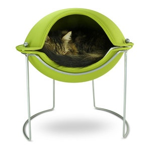 My cat would be sooo comfortable in that!