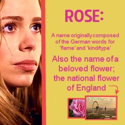 Rose: Rose Doctorwho, The Tardis, National Flowers, Rose I, Rose Tyler, Rosetyl Doctorwho, Doctors Rose Human 10, Doctors Who, Amy Pond