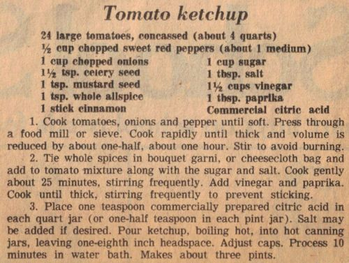 Homemade Tomato Ketchup Recipe Clipping