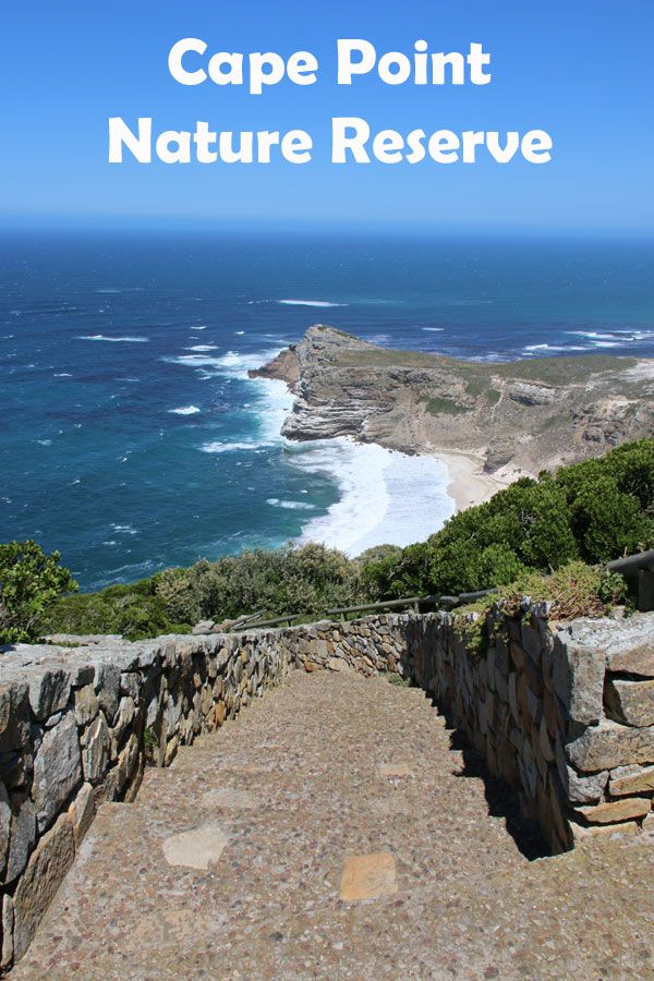 A Day Trip to Cape Point Nature Reserve with Kids