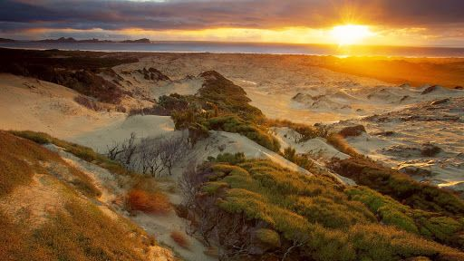 Mason Bay Beach at Sunset, Rakiura National Park, Stewart Island, New Zealand.jpg