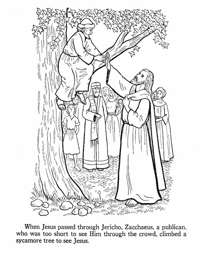 jesus teaches coloring pages zacchaeus climbs a tree to see jesus - Jesus Zacchaeus Coloring Page