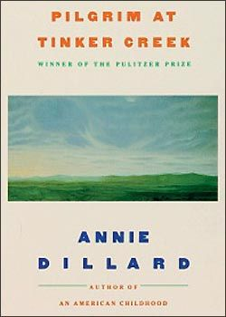 a look into the chapter two of pilgrim at tinker creek Pilgrim at tinker creek is a 1974 nonfiction narrative book by  dillard began writing pilgrim in the spring  separated into four sections that signify.