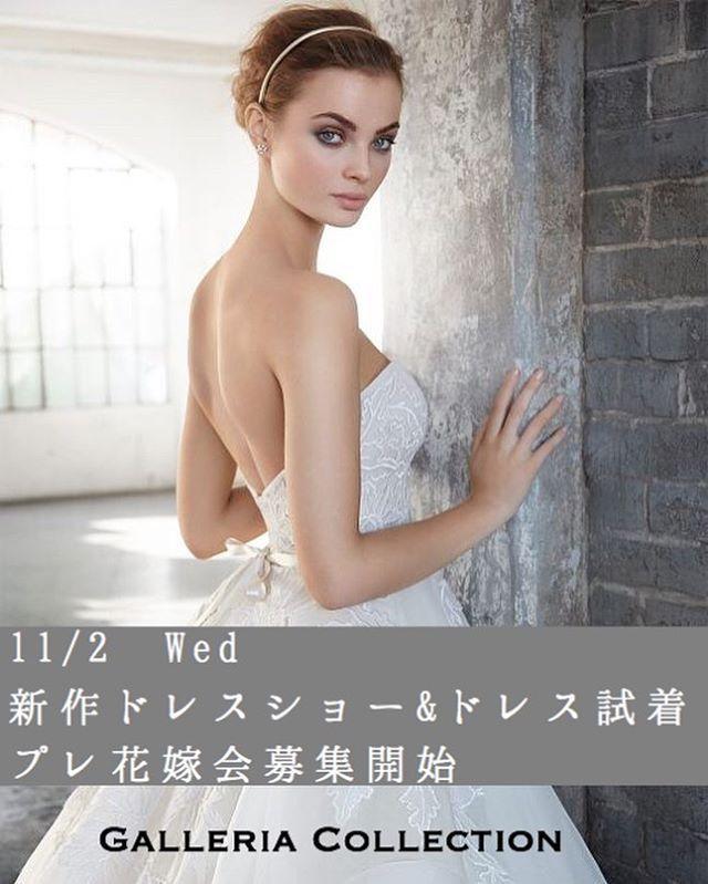 11月2日  #ドレス迷子会 開催 第12回Beautybride #プレ花嫁会募集開始 #ギャレリアコレクション とコラボしたドレス迷子会IN GALLERIA COLLECTION を開催します. 花嫁様なら一度は憧れる @galleria_collection  のインポートドレス. 選び抜かれたそのドレスたちを身にまとい相談できるチャンスがやってきました. なんと今回は新作ドレスショーも開催ドレス迷子の花嫁様集まれ. 開催日時. 2016年11月2日水. 1部14:0016:00受付13:30. 2部18:3020:30受付18:00. . 開催場所. ギャレリアコレクション青山店. 最寄り駅外苑前駅. http://ift.tt/2e9pXMt . . イベント内容. 新作ウェディングドレスショー. ギャレリアコレクションが誇る最新インポートドレスを披露感動的なドレスたちが身近で見れる滅多にないチャンス. . ドレス試着会. ショーに出たドレスはもちろんコンシェルジュと一緒にお似合いのドレスをとことん選びましょうオシャレ大好きな花嫁様に素敵なドレスをご提案します…
