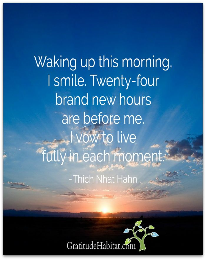 Everyday Is A Brand New Day Quotes: 901 Best Quotes: Inspiration And Gratitude Images On Pinterest