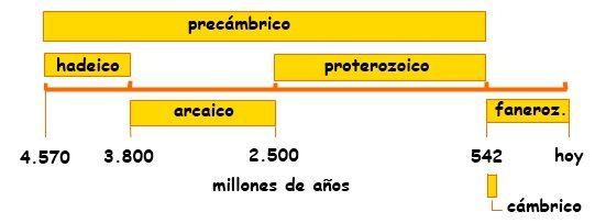La Biografía de la Vida 16. El árbol filogenético del precámbrico