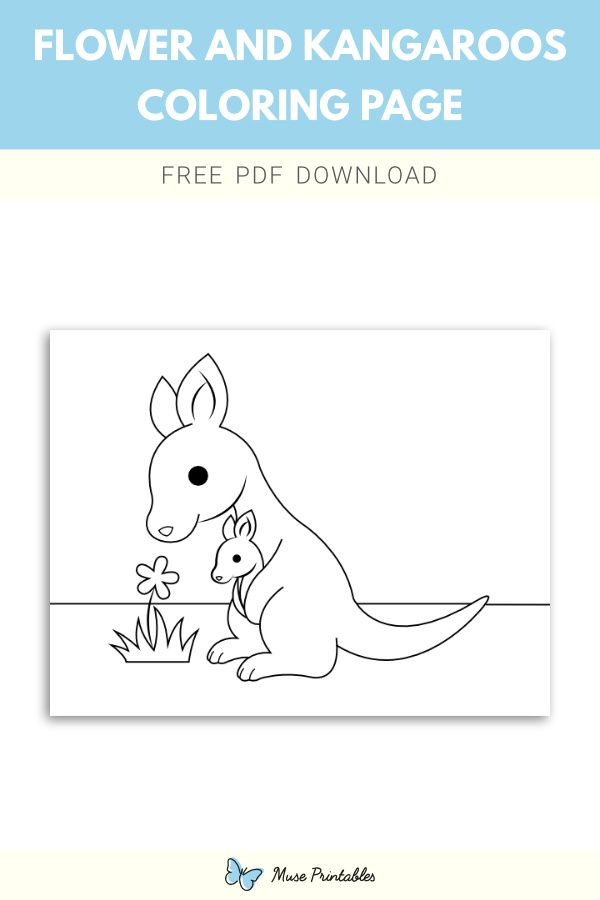 Free Flower And Kangaroos Coloring Page Coloring Pages Flower Printable Color