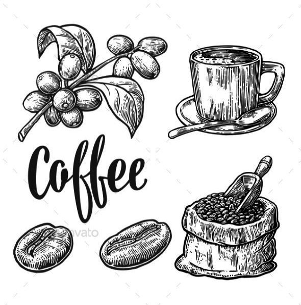 Coffee Near Me Please These Coffee Grounds Your Coffee Shop Near Me Fort Collins Coffee Drawing Coffee Bean Art Coffee Doodle