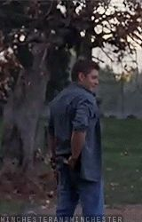 Yummy! The prototype for Parker. [gif] - Jensen and his full body laugh :D