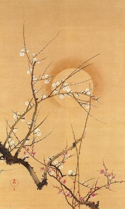 """The Moon and Ume (Plum)"". Edo period. Sakai Hōitsu, Yamatane Museum of Art"
