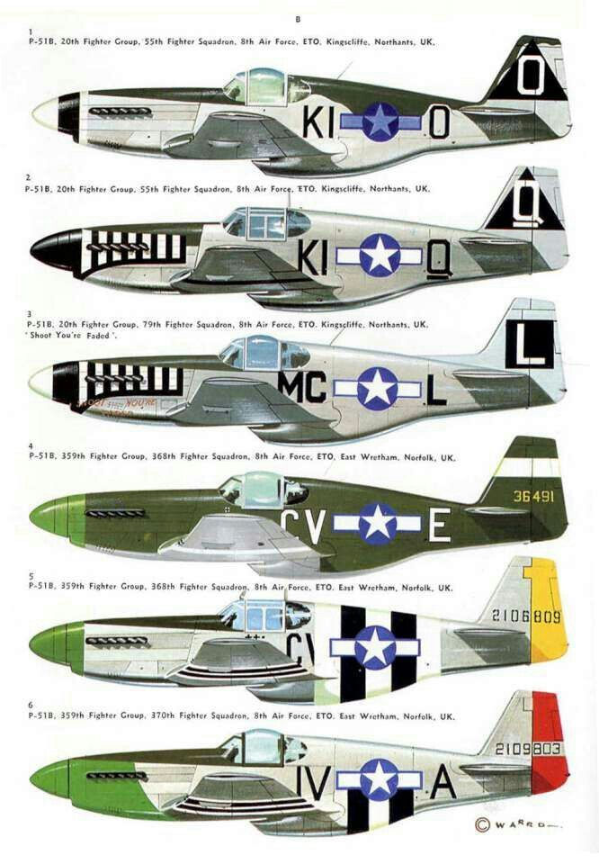 P-51 Mustang : mustang, Mustang, Different, Livery, Styles, Mustang,, Aircraft,