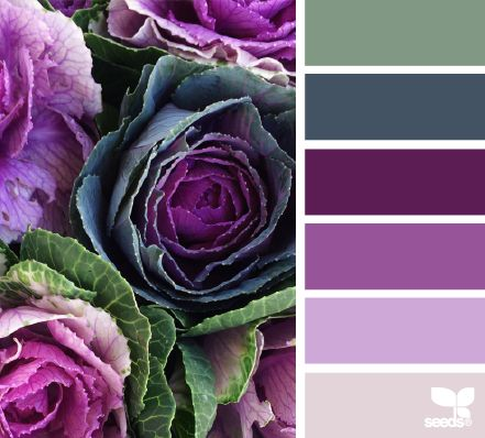 Purples and gray-green