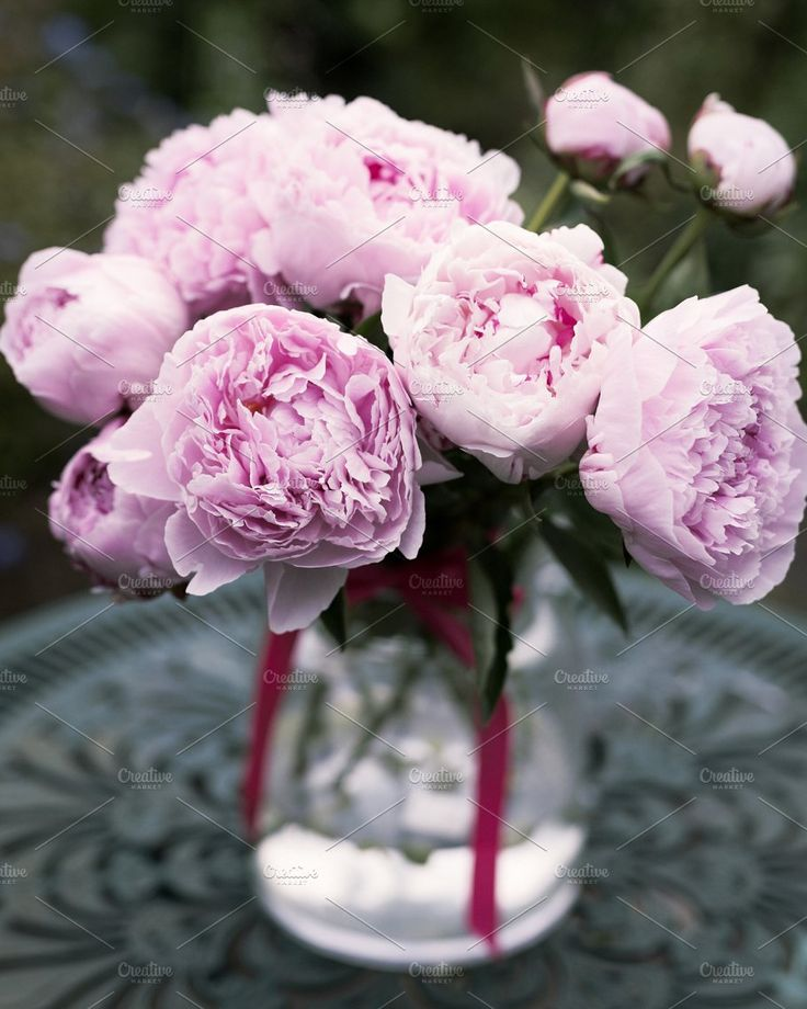 Pink Peonies in a Vase Stock Photo by RUE PARADIS STOCK on @creativemarket