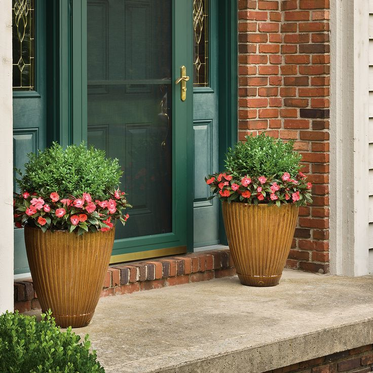 Using an evergreen such as North Star Buxus in your porch pots is an easy, low maintenance solution that works in sun and shade. The evergreens will continue to shine all season and the surrounding flowers can be changed out per season—Pansiolas in spring, Infinity New Guinea Impatiens in summer, garden mums in fall…