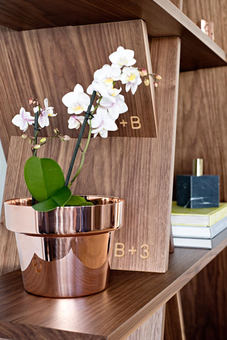 This amazing Walnut bookcase fits together like a puzzle--no hardware! It's the…