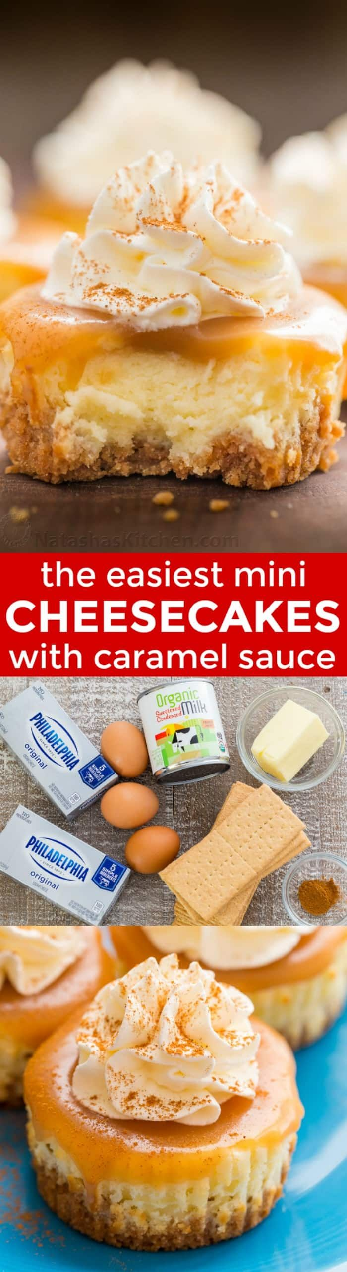 Mini cheesecakes with caramel sauce are so easy and delicious! The base is just 3 ingredients. Mini cheesecake cupcakes are excellent in flavor and texture. | natashaskitchen.com