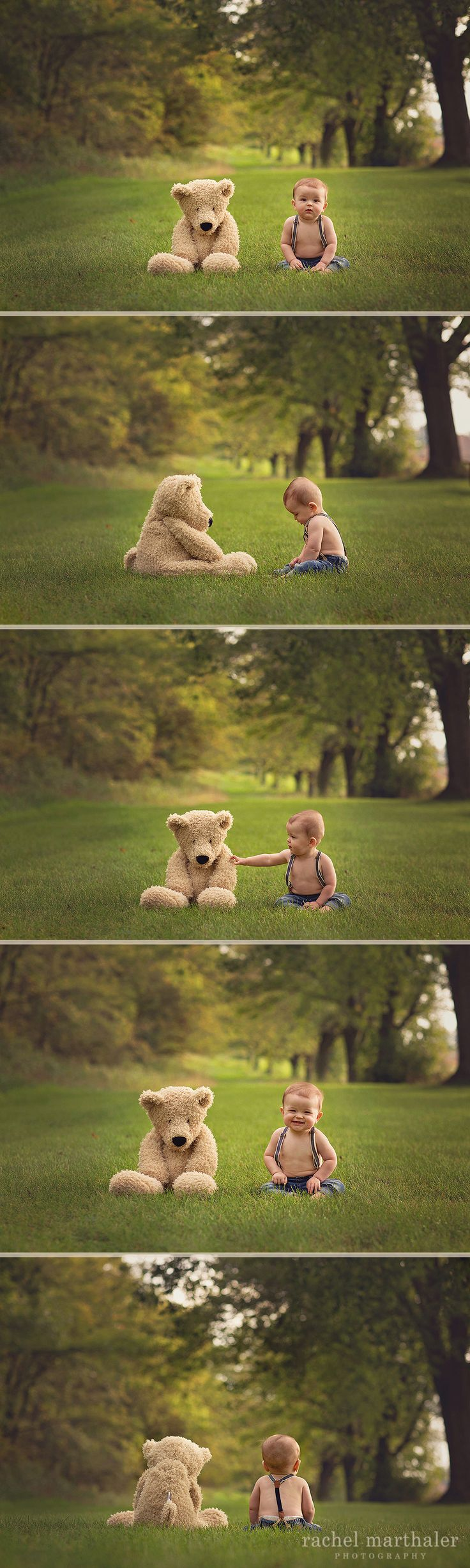 Baby Teddy Bear Photo, 8 month photo baby boy, Teddy bear, Twin Cities Photographer, Rachel Marthaler Photography