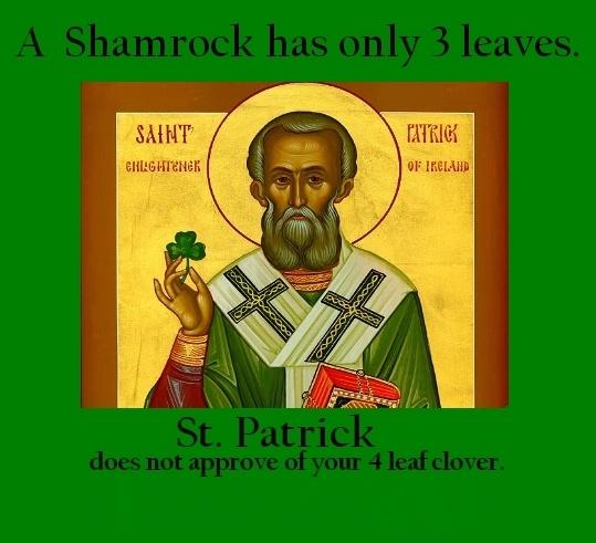 Image result for saint patrick meme