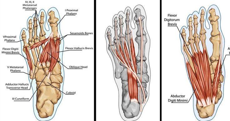 Ir ļoti daudz lietu, kas var sabojāt tavu stāju un izraisīt sāpes mugurā, gurnos un ceļos. Labā ziņa ir tā, ka sāpju atvieglojums un laba stāja ir tikai dažu vingrinājumu attālumā.