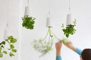 $19 for a Sky Planter Hanging Flower Pot in Choice of Colour