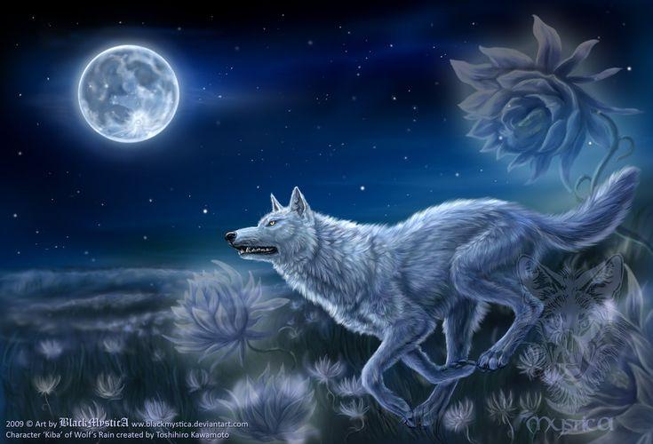 wolves art | Kiba from Wolf's Rain by *BlackMysticA on deviantART
