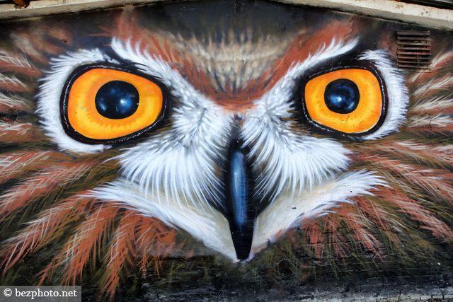 граффити животных