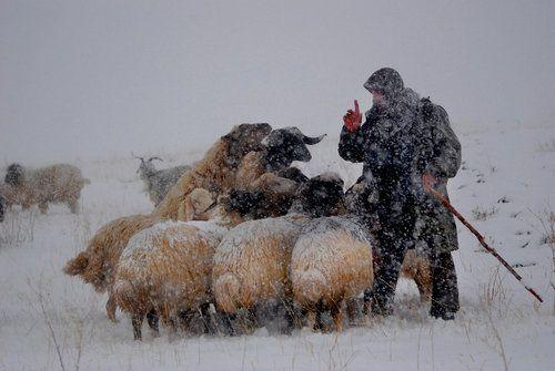 storm by Tayfun Çiftçi