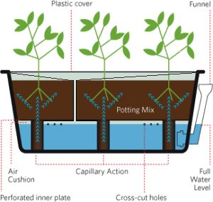 Self-watering containers for plants with shallow root systems; Groasis Waterboxx for plants with deeper root systems. Combine these with a shading structure/shade cloth for maximum water efficiency.