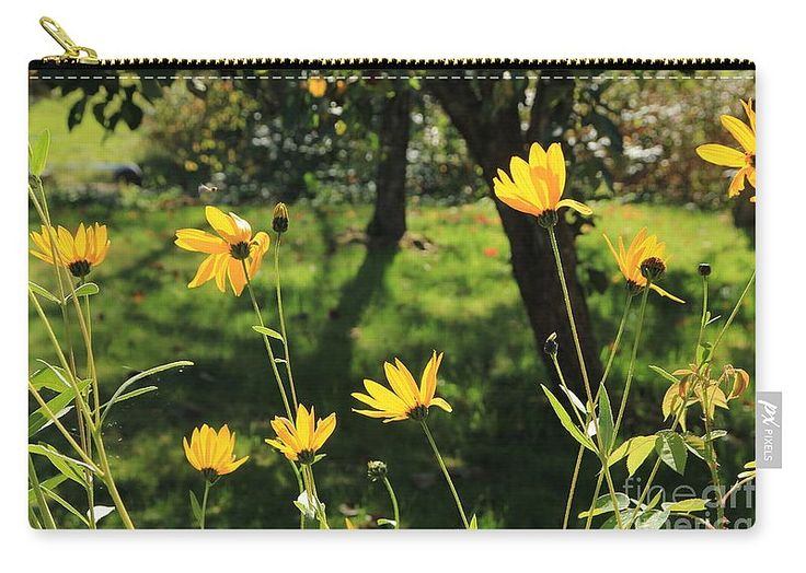 Garden Carry-All Pouch by Sverre Andreas Fekjan.  Our pouches are great…