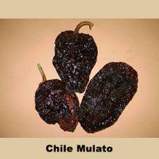 Chile Mulato