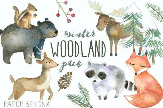 Winter Woodland Animals Clipart Watercolor Forest Animals Etsy Animal Clipart Winter Woodland Woodland Animals