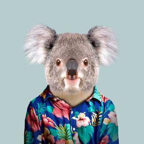 Zoo Portraits - Become the Animal