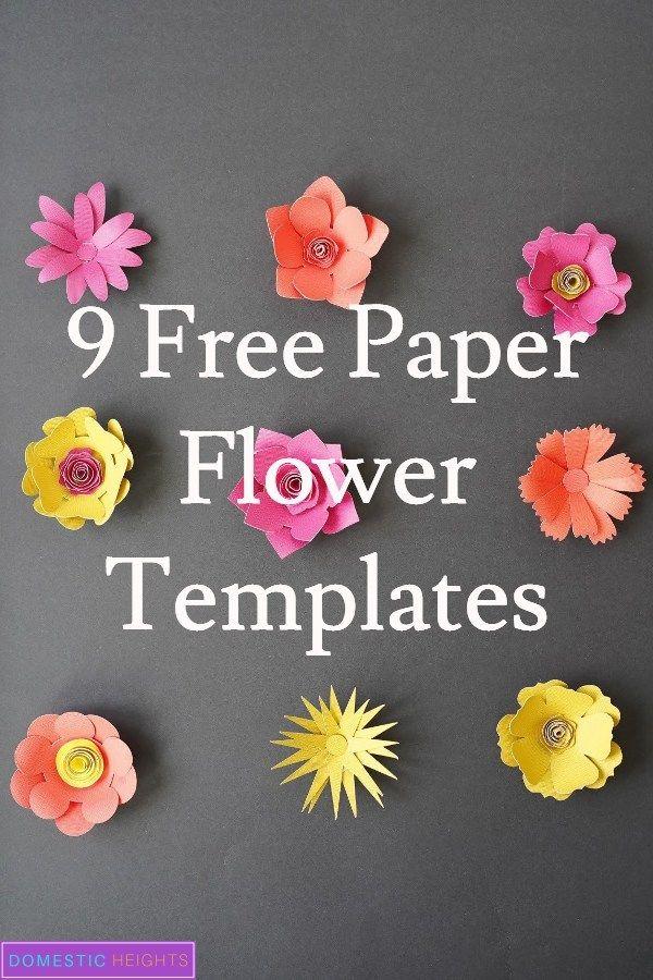 Semi Rolled 3d Paper Flowers Paper Flowers Diy 3d Paper Flowers