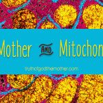 God the Mother and the Mitochondrial Eve
