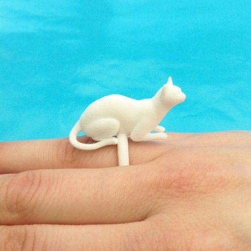 ring cat lying white 72